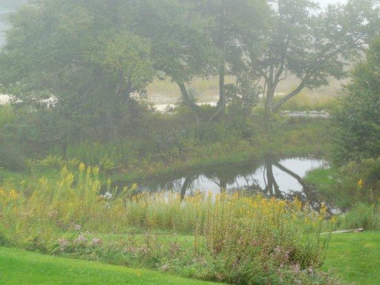 Mountain Lake Lodge : Pond