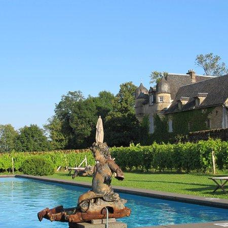 le ch teau vu de la piscine picture of chateau de labro. Black Bedroom Furniture Sets. Home Design Ideas