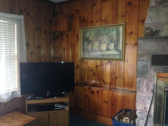 Prague Motor Inn: Nice knotty pine and TV