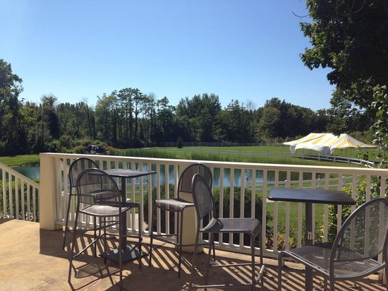Sun n Sand Resort: View of the grounds