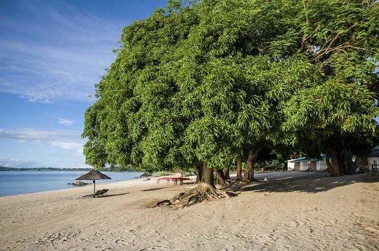 Central African Wilderness Safaris Chintheche Inn: Beach