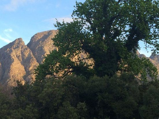 The Villas at Le Franschhoek: The view...