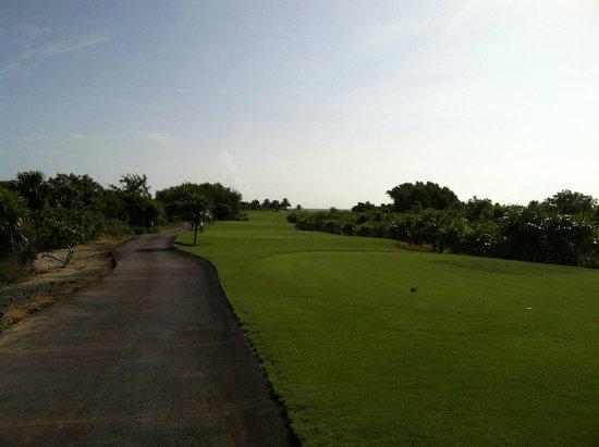 Playa Mujeres Golf Club: par 4 heading toward the ocean