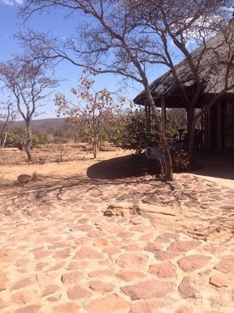 Izintaba Private Game Reserve: Duiker cottage
