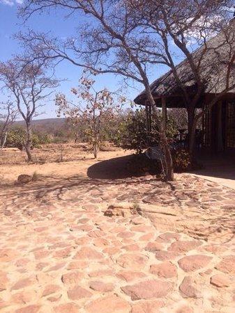 Izintaba Private Game Reserve: Duiker cottage