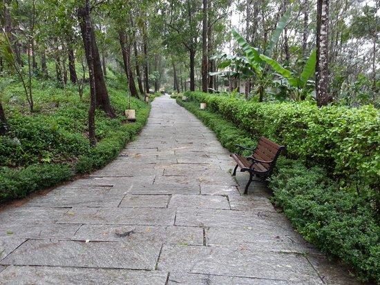 Club Mahindra Madikeri, Coorg: place to unwind