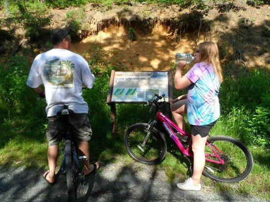 Cedar Creek Campground: Barnegat Branch Trail
