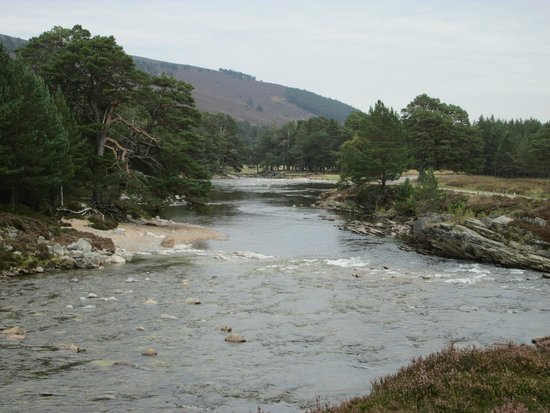 Linn O' Dee: River Dee from the bridge - Sept..2014