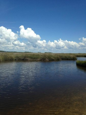 St. Marks Lighthouse: Looking out on the marsh from the nature trail