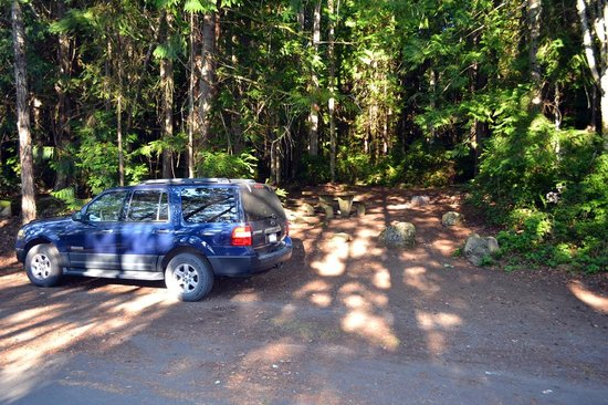 Campsite at Seal Rock Campground