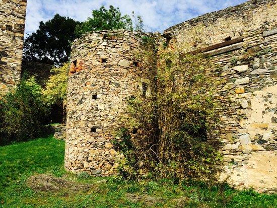 Ruine Schauenstein