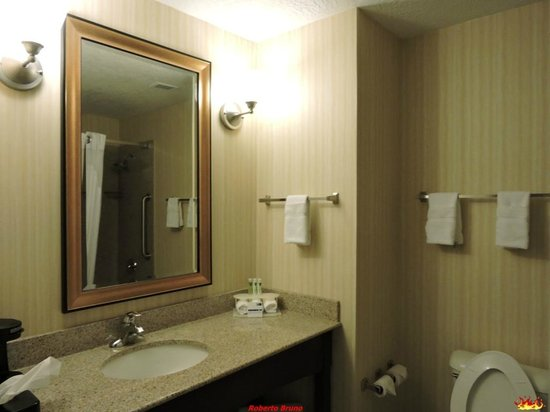 Holiday Inn Express Hotel & Suites Grants-Milan: Bagno