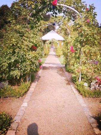 Parque Planten un Blomen: Einfach nur atemberaubend