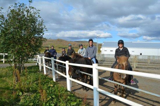Gray Line Iceland: Icelandic Horseback Riding