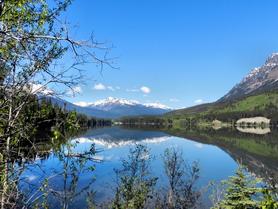 Les Rocheuses canadiennes, Canada : Close to Mount Robson