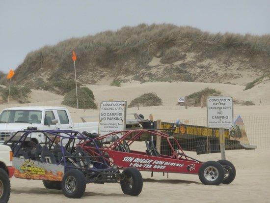 Sun Buggy & ATV Fun Rentals - Pismo Beach: Buggys.