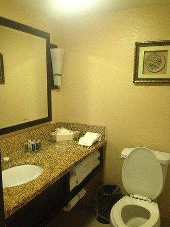 Radisson Suites Hotel Anaheim - Buena Park: Bathroom