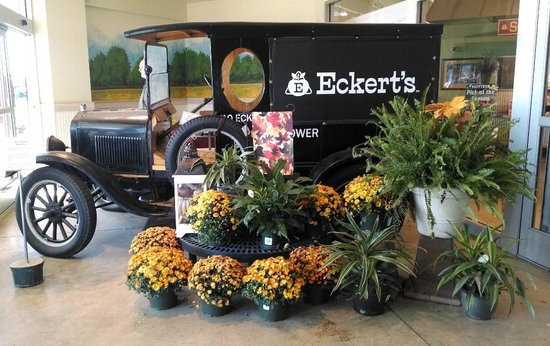 Eckert's Belleville Farm: Fall decorations at the Eckert's grocery store