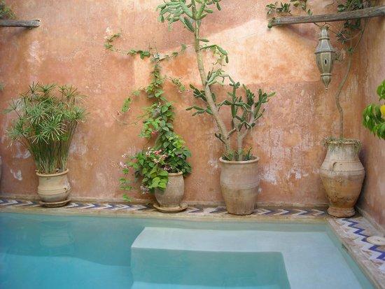 Dar Mouassine: piscina
