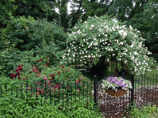 Charles Inn: Gardens in full bloom in the Spring