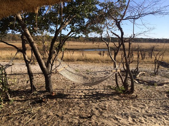 Sable Sands: The rooms facing the waterhole are the best! You get to see the animals come by.