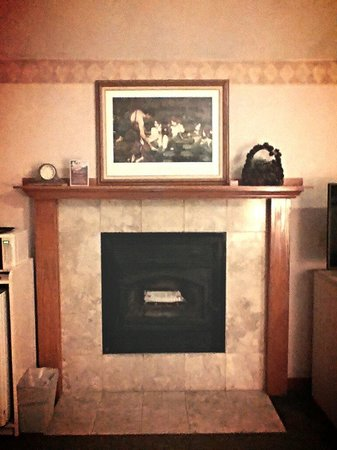 Bodega Coast Inn & Suites: Fireplace!