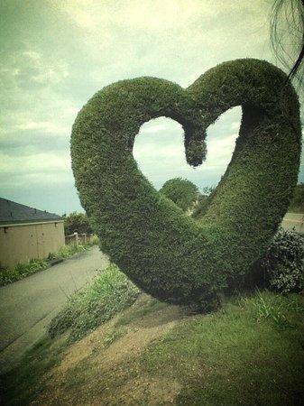 Bodega Coast Inn & Suites: More hearts!!