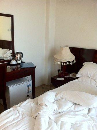 Ag Palace Hotel: Room