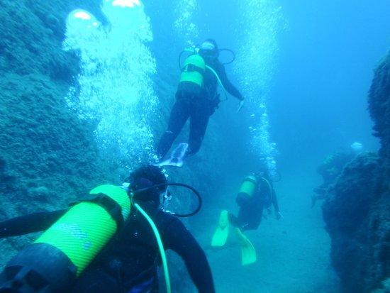 L'AMFORA, Centre d'immersio: En ruta