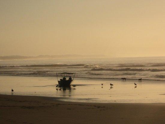 La Dolce Vita: Pacific Ocean