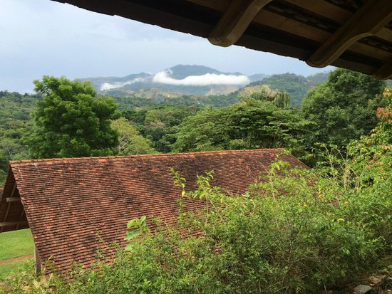 Living Heritage Koslanda: View from suite