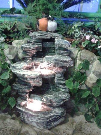 Ded Moroz Estate: Оранжерея