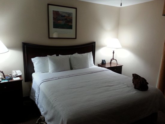 Homewood Suites by Hilton Dallas-Lewisville: Master Bedroom