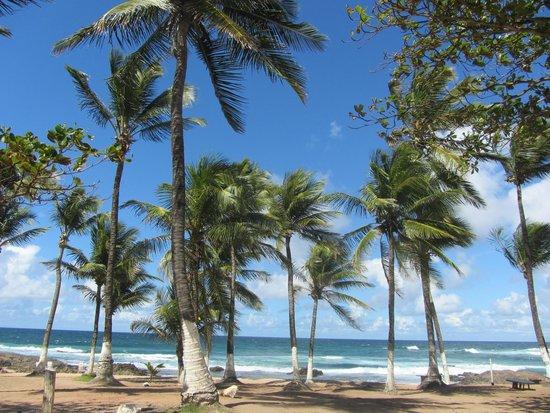 La meravigliosa spiaggia di Itapuì, a pochi passi da Casa Encantada