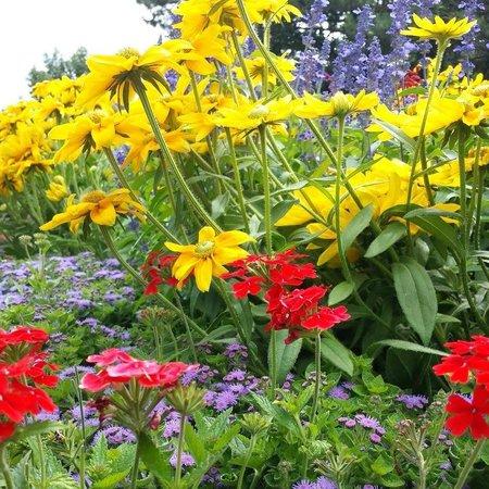 Sunken Gardens: Beauty