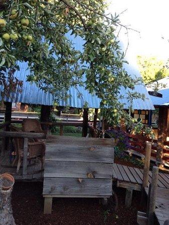 Halfway, OR: Deck in the garden