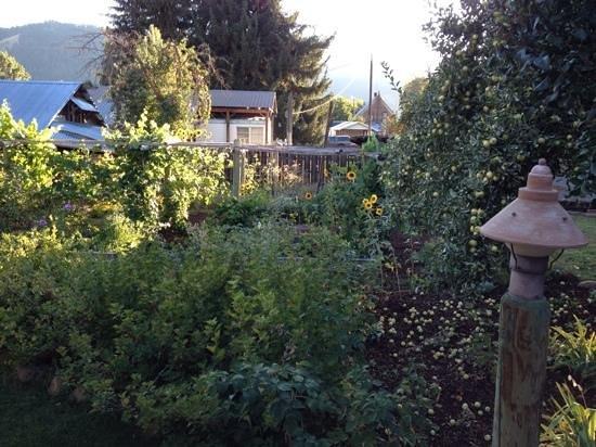 Halfway, OR: Garden