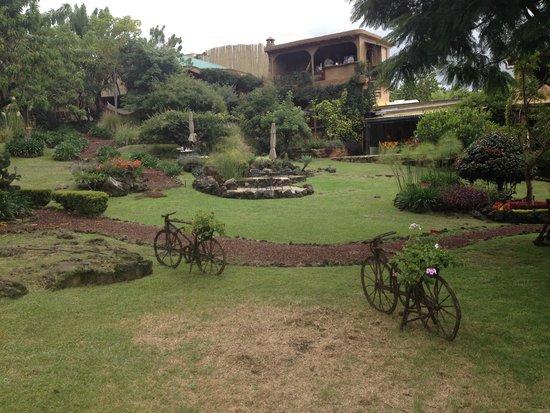 Villas Valle Mistico: desayuno en el jardín, excelente opción