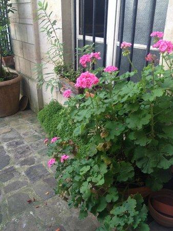 Les Toits du Marais : Flowers in the courtyard