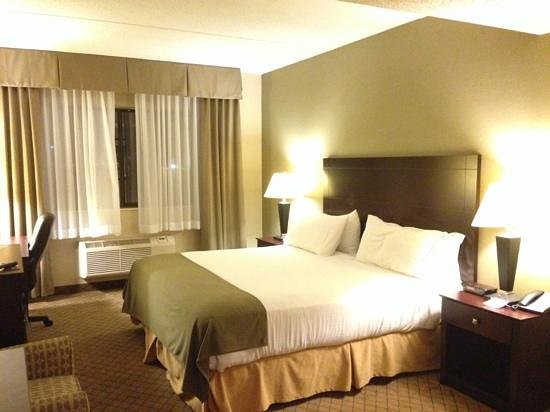 Holiday Inn Express Sault Ste. Marie : king room