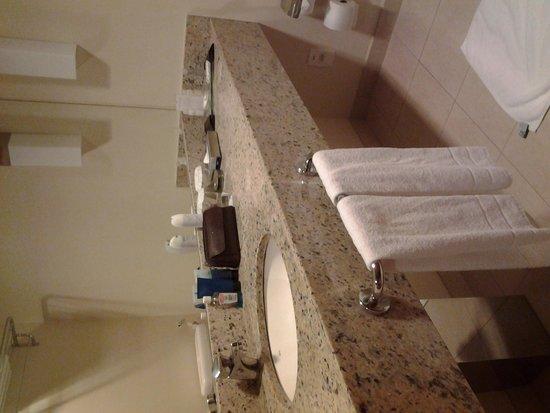 Caesar Business Manaus: Banheiro