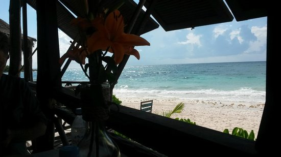 Al Cielo Hotel: View from the dining room of the gorgeous beach