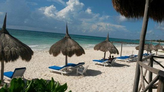 Al Cielo Hotel: The gorgeous beach and palapas