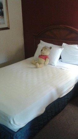 Rodeway Inn Maingate: Le pusieron el peluche de mi hija en la cama, me encanto