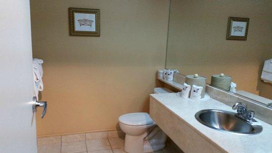 Chateau Repotel Henri IV: Toilettes / Lavabos