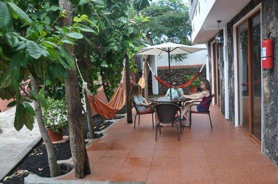 Lava House Hostal : salas louge con hamacas súper chevere