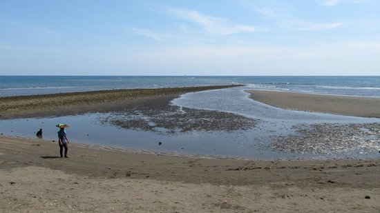 Adirama Beach Hotel: What you will see at low tide - looking NNW