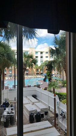 Holiday Inn Resort Orlando-Lake Buena Vista: Pool view from our window