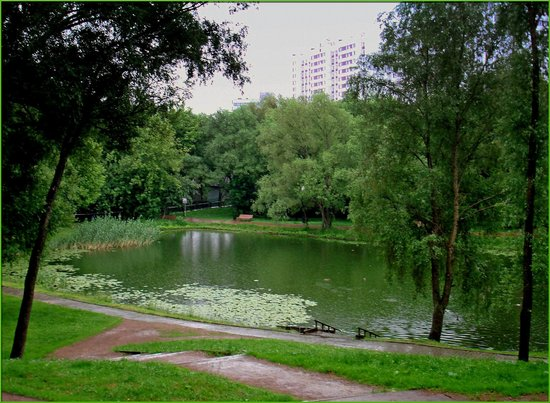 Park Leonovo
