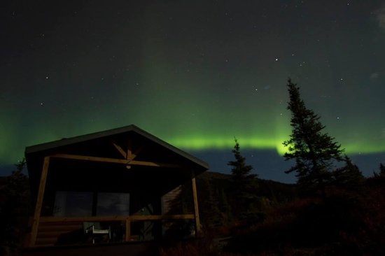 The aurora over our Camp Denali Cabin